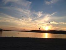 Jeziorny Lemański zmierzch Zdjęcie Stock