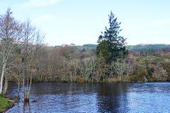 Jeziorny Loch Ness - brzeg Obrazy Royalty Free