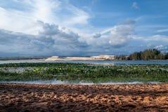 Jeziorny lotos i Białe piasek diuny Zdjęcie Stock