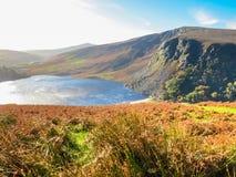 Jeziorny Lough Tay lub Guinness jezioro, Irlandia Obrazy Royalty Free