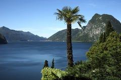 jeziorny Lugano Switzerland Zdjęcie Royalty Free