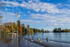Jeziorny Maggiore zdjęcia stock