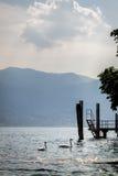 Jeziorny Maggiore Obrazy Stock