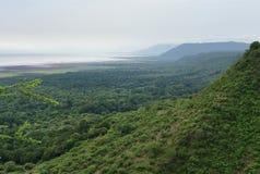 Jeziorny Manyara park narodowy w Afryka Obrazy Stock