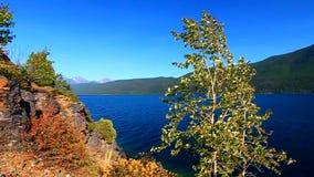 Jeziorny McDonald lodowa park narodowy zbiory