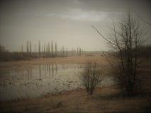 Jeziorny miejsce 1 zdjęcia stock