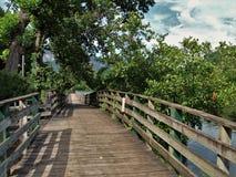 Jeziorny nęcenia Boardwalk zdjęcia stock
