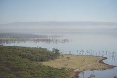 Jeziorny Nakuru Obrazy Royalty Free