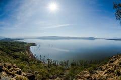 Jeziorny Nakuru park narodowy, Kenja zdjęcie royalty free