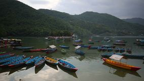 jeziorny Nepal phewa pokhara zbiory