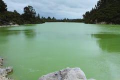 Jeziorny Ngakoro Obrazy Stock