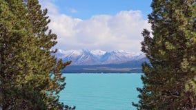 jeziorny nowy pukaki Zealand obraz stock