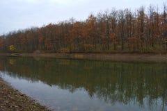 Jeziorny odbicie w jesieni Obraz Stock