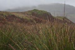 Jeziorny okręg, Cumbria - łąki i wzgórza obrazy royalty free