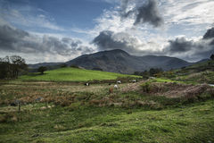 Jeziorny okręgu krajobraz z burzowym niebem nad wsi anf fie Zdjęcia Royalty Free