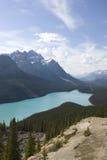 jeziorny peyto Zdjęcie Royalty Free