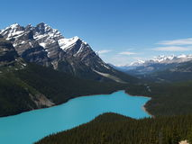 jeziorny peyto obrazy royalty free