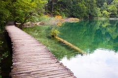 jeziorny plitvice Zdjęcia Royalty Free