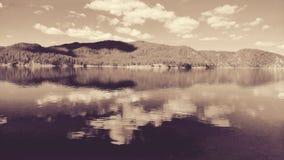 Jeziorny Poinsett Zdjęcia Royalty Free