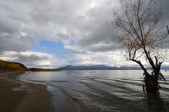 Jeziorny Prespa Zdjęcie Royalty Free