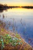 jeziorny ranek Zdjęcia Stock