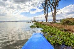 Jeziorny rejs błękita czółnem, Naivasha, Kenja Fotografia Stock