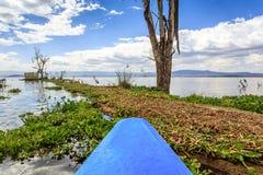 Jeziorny rejs błękita czółnem, Naivasha, Kenja Obraz Royalty Free