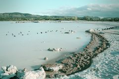 Jeziorny Rotorua Obraz Royalty Free