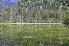 Jeziorny Schiederweiher Obrazy Stock
