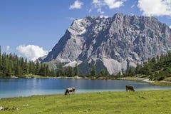 Jeziorny Seeben i Zugspitze Zdjęcie Stock