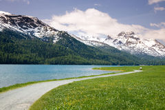 jeziorny silvaplana Zdjęcia Royalty Free