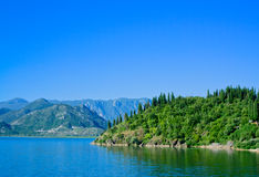 Jeziorny Skadar park narodowy, Montenegro obraz royalty free