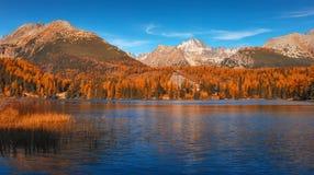 Jeziorny Strbske Pleso Słowacka republika - Wysoki Tatras - fotografia royalty free