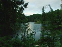 Jeziorny Sylvia jezioro Zdjęcia Stock
