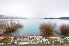 Jeziorny Tekapo, Południowa wyspa - Nowa Zelandia Fotografia Royalty Free