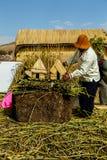 Jeziorny Titicaca, bambusowy lavoration, Uros wyspa obrazy royalty free