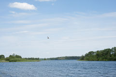 Jeziorny Valday Fotografia Royalty Free