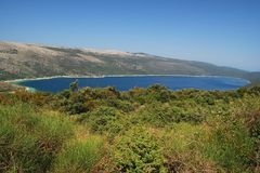 jeziorny vrana Zdjęcie Royalty Free