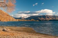 Jeziorny wanaka Fotografia Royalty Free
