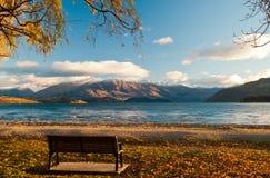 Jeziorny wanaka Fotografia Stock