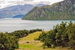 Jeziorny Wanaka, Wanaka - Obrazy Royalty Free