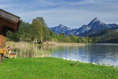 Jeziorny Weissensee z drewnianą budą i kaczką obraz stock