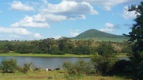 Jeziorny widok Zdjęcia Stock