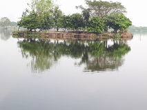Jeziorny widok Obrazy Stock
