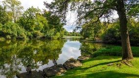 Jeziorny widok W Lasowej prezerwie fotografia royalty free