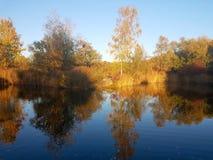 Jeziorny widok w Merian ogr?dzie fotografia royalty free