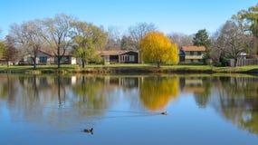 Jeziorny widok W przedmieściu zdjęcie royalty free