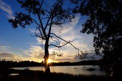 Jeziorny widoku zmierzch Zdjęcia Royalty Free