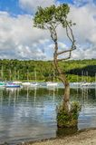 Jeziorny Windermere przy Bowness Obraz Stock