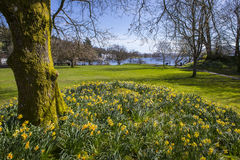 Jeziorny Windermere w wiośnie Zdjęcia Royalty Free